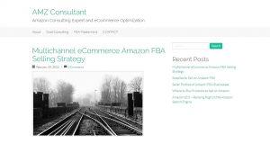AMZ Consultant-1.jpg