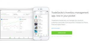 Trade Gecko-11.jpg