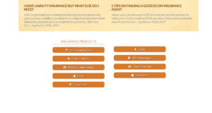 Voldico Insurance-9.jpg