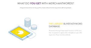 MerchantWords-3.jpg