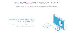 MerchantWords-6.jpg