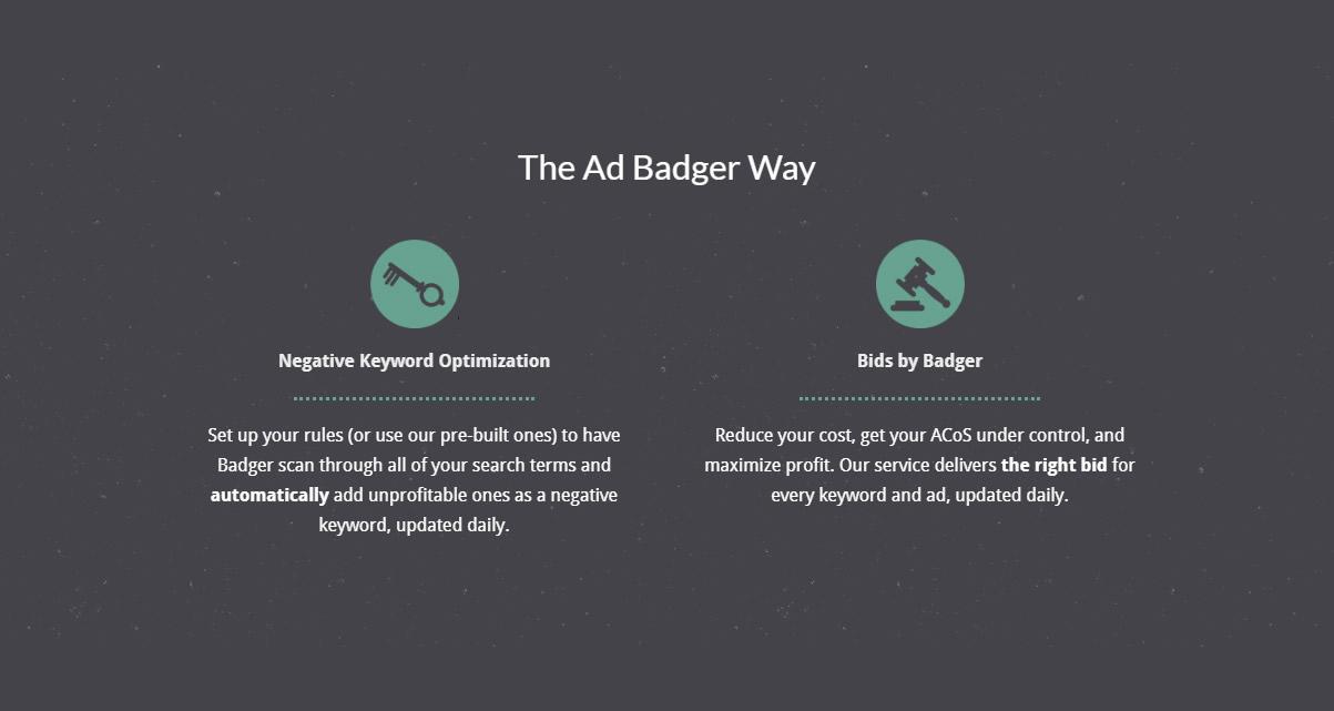 ad badger-3.jpg