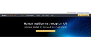 Amazon Mechanical Turk-1.jpg