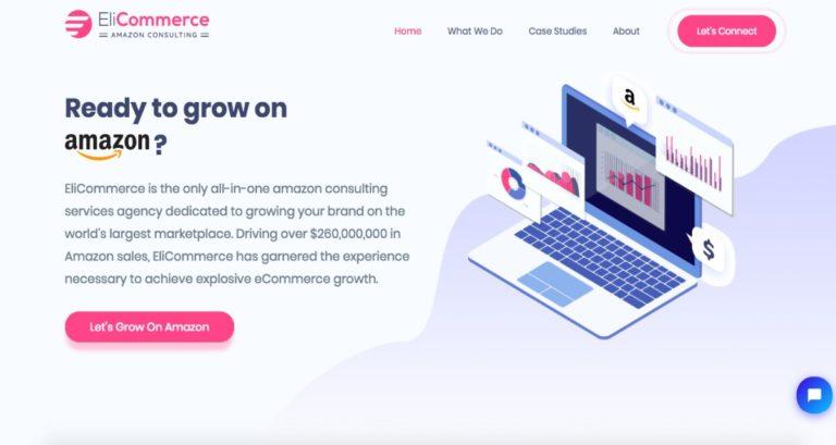 EliCommerce - Amazon eCommerce Consulting