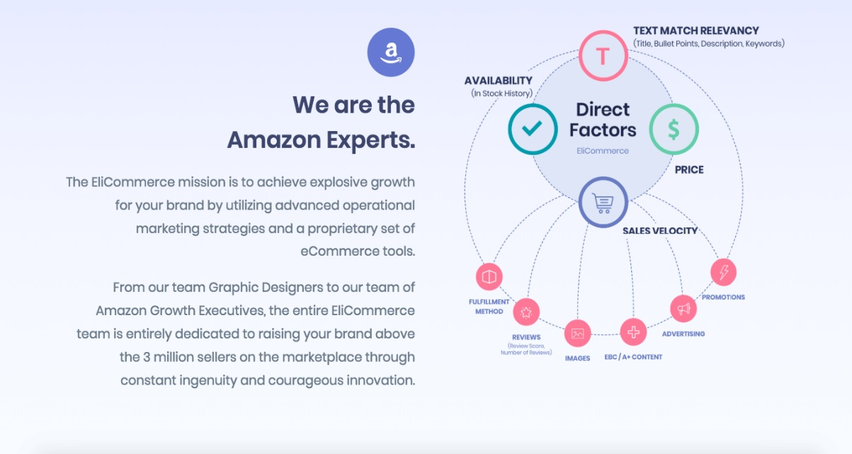 EliCommerce - Amazon eCommerce Consulting - 4.jpeg